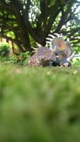 Styracosaurus mother and baby by Gorpo