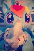 Dashie and Discord. by seaninja951