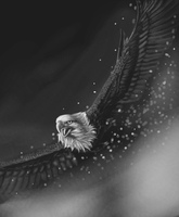 Strength of an Eagle by 0-Stargazer-0