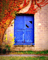 blue doors by Toadsmoothy2