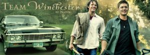 Team Winchester by Nadin7Angel