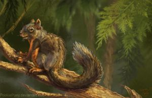 Douglas Squirrel by PookiePony