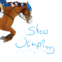 Flossy Show Jumping by CrazyBrit88