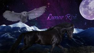 Lunar Rise and the Spirit owl by Theliquidspoon