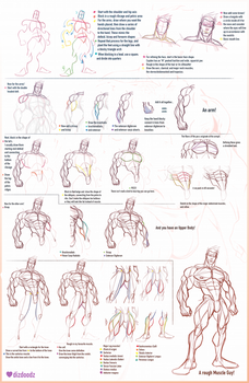 How to Draw Cayden and Male Anatomy Tutorial by dizdoodz