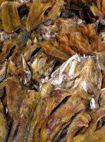 Dried Fish Kasane Botswana by Jenvanw