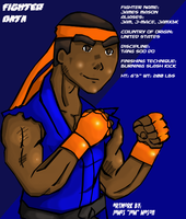 Fighter Data 2 Complete by J-Mace