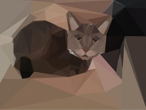 Polygraphic Cat by Eveningshadow1022