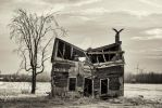 Vultures Roost by shawnkent