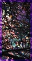Stained Glass Woods by bewilderedconfused