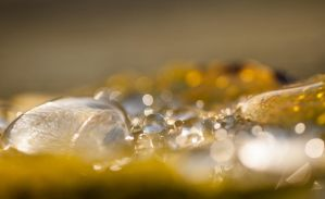 Drops 3 by Aredelsaralonde