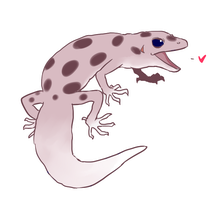 Gecko! by amberday
