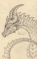 Dragon sketch 03 by Nimphradora