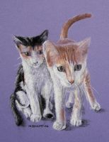 Brat Cats by spudsy2