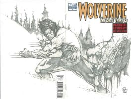 Wolverine: The Best There Is by Ace-Continuado