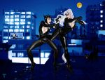Catwoman vs. the Black cat by TommyTejeda