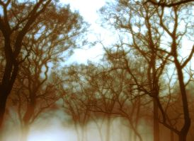 Premade Background 646 by AshenSorrow