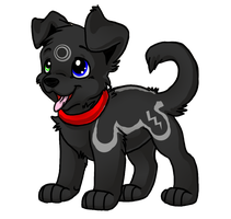 Cute Black Puppy Adoptable by Stormy-Tiger