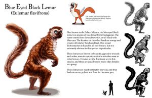 Lemur sheet by Tikall