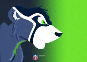 Seahawks by Lufca