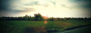 Panoramic by theworst24