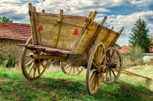 Colorful wagon by JosivBG