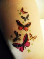 The Butterfly Project 2 by pyromantic-prince