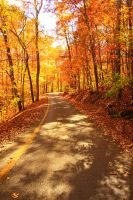 The Road Less Traveled By (Autumn) by SparkVillage