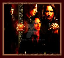 Its Mr Gold by Missykat90