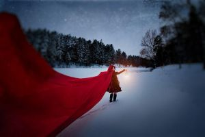Little Red Riding Hood - Follow me by Lady-I-Hellsing