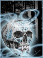 Skull by Betty-Parys
