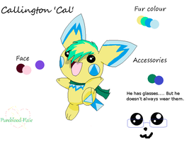 Cal the Shapechu by Pureblood-Pixie