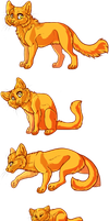 Cats by snapple-bee