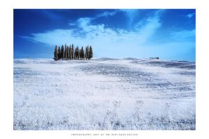 Tuscany IR - VII by DimensionSeven