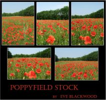 poppyfield backgrounds stock by EveBlackwood
