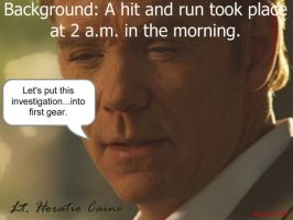 Horatio Caine One-Liner 7 by Adielsag