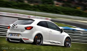 Seat Ibiza TDI Cup by DSMCarDesign