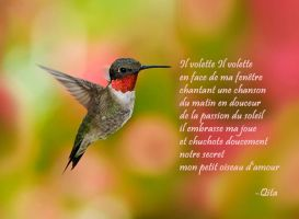Mon Petit Oiseau D'amour by Themoonofmyheart