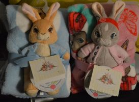 Peter Rabbit and Lily Bobtail by juliorabbit2