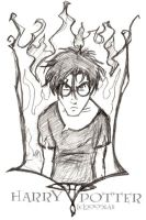 Burn Motherf'cker Burn-Harry by lberghol