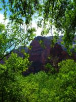 Zions 2 by todds201