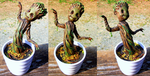 Groot, mark two by Law-of-Murph