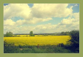 English countryside by dethita