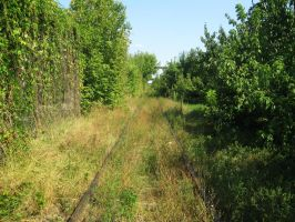 Stock 43 - Abandoned railroad 1 by MariaBilinski