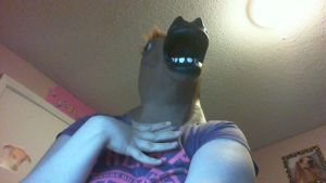 A fabulous picture of me in my horsemask by XxOrangeswirlxX