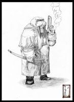 Don't Mess With The Walrus by Tatong