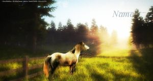In The Meadow by HorseLandLayouts