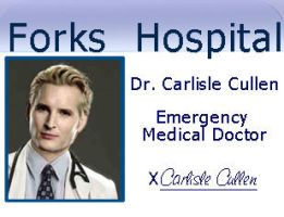 Carlisle's Badge by carlislesgirl1