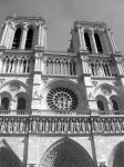 Notre Dame by DustpanGirl
