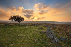 combestone sundown by sassaputzin